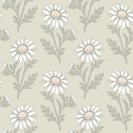 chamomile tea: Seamless vector pattern. Illustration of chamomile flowers. Designs for textiles, upholstery fabric, interior, curtains, paper, packaging, wallpaper. Floral ornament.