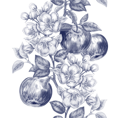 Vector seamless background. The branch of blossoming apple tree with fruits. Design for fabrics, textiles, paper, wallpaper, Internet. Vintage. Floral ornament. Black and white.