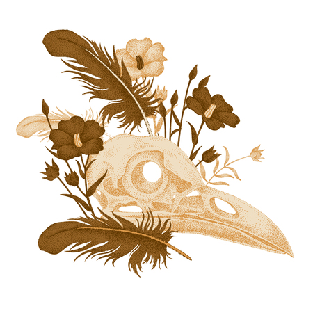 avian flu: The illustration on the theme of death. Vector image of skull bird, flower and bird feathers on a white background. Vintage. Composition in gold color.