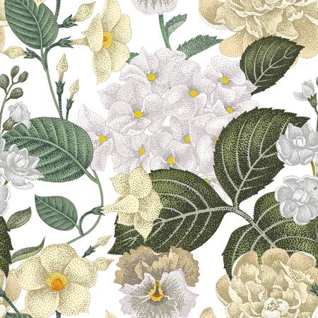 gillyflower: Garden hydrangea flowers, violet, bindweed, gillyflower on white background. Vector. Seamless floral pattern. Illustration - luxury packaging design template, textile, paper, wallpaper.