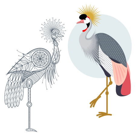 crowned: Bird Crowned crane. Flat icon and template for adult coloring, zen tangle. Set of vector animals in different unusual style. Illustration collection of nature objects isolated on white background. Illustration
