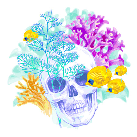 seabed: Illustration of the seabed. Exotic fish, corals, skull. Vector. Composition isolated on white background.