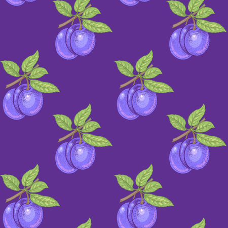 Vector seamless pattern. Branches with leaves and plums on a purple background. Illustration for design packaging, paper, wallpaper, fabrics, textiles. 向量圖像