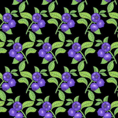 bilberry: Vector seamless pattern. Branches with leaves and bilberry on a black background. Illustration for design packaging, paper, wallpaper, fabrics, textiles.