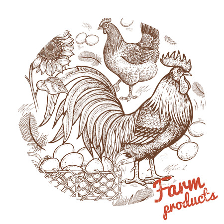 Farm birds - cock and hen, basket with eggs and flower sunflower in a circle. Vector illustration. Hand engraving of farm animals and objects agricultural theme. Vintage. Design for farm products.