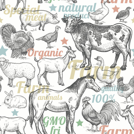 turkeys: Seamless pattern with livestock, poultry, inscriptions. Farm birds and animals in the style of vintage engraving. Vector illustration. Design for packaging farm products and  farm food shops.