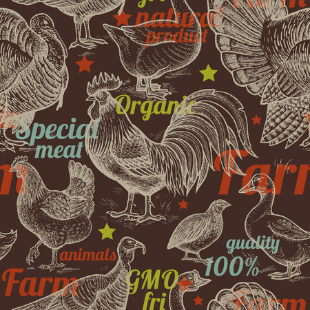 package printing: Seamless pattern with poultry, inscriptions. Vector illustration. Farm birds in style of vintage engraving. For packaging farm products, farm food shops. Goose, rooster, chicken, turkey, duck, quail.