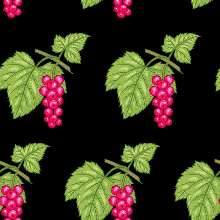red currant: Vector seamless pattern. Branches with leaves and Red currant on a black background. Illustration for design packaging, paper, wallpaper, fabrics, textiles. Illustration