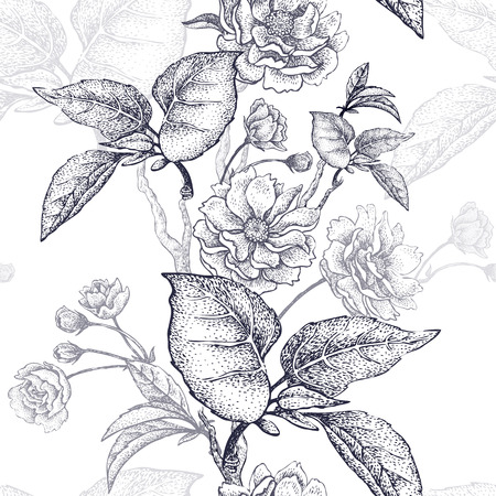 national fruit of china: Black and white vector background with flower Chinese plum. Floral pattern with leaves, flowers and branches of the tree Chinese plum. Design paper, wallpaper and fabrics. National Chinese plant.
