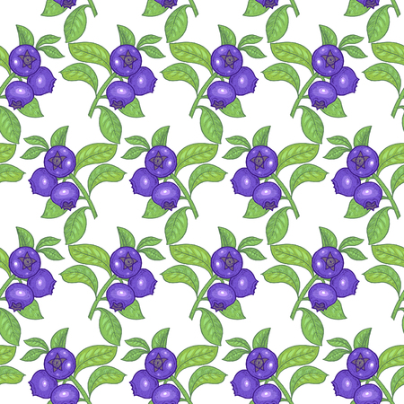 bilberry: Vector seamless pattern. Branches with leaves and bilberry on a white background. Illustration for design packaging, paper, wallpaper, fabrics, textiles.
