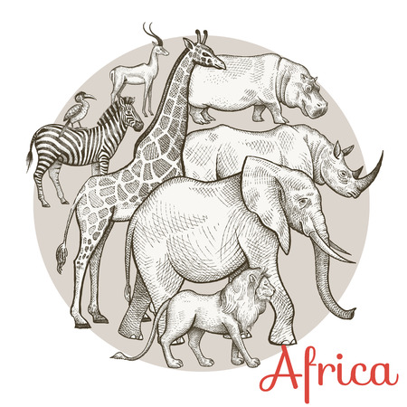 royal safari: African animals elephant, lion, giraffe, rhinoceros, hippopotamus, zebra, antelope. Composition in a circle. Vector illustration. Design for print on T-shirts, clothing, bags, covers, brochures.