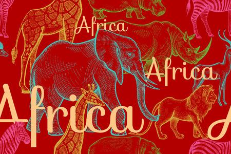Vector patrón transparente animales africanos elefantes, rinocerontes, jirafas, cebras, hipopótamos, leones, antílopes, inscripciones. Dé la ilustración color de dibujo sobre fondo rojo. Los diseños para telas, textiles, papel.