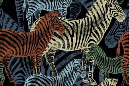 아프리카 동물과 원활한 벡터 패턴입니다. 검정색 배경에 색깔 된 얼룩말입니다. 원단, 바탕 화면, 종이, 섬유, 커튼, 사파리 스타일의 여름 옷을 디자