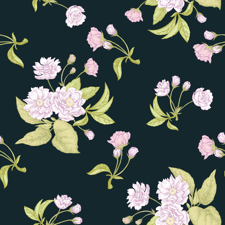 plum flower: Plum flower on black background. Seamless vector pattern.