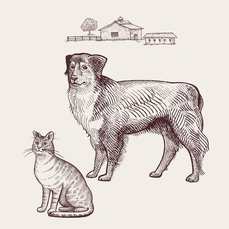 herding: Dog and cat. Vector.