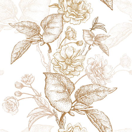 Gold embroidery on a white background. Vector illustration based on the Chinese luxury fabrics. Hand drawing of a flowering plum tree, flowers, branches and leaves. Vintage. Illustration