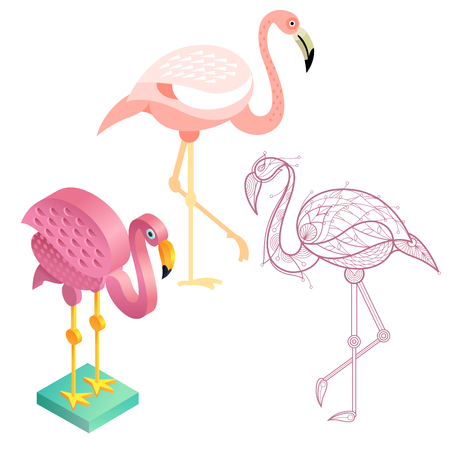 Birds flamingos. Flat icon, template for adult coloring, isometric view. Set of vector birds in different unusual style. Illustration collection of images birds isolated on white background.