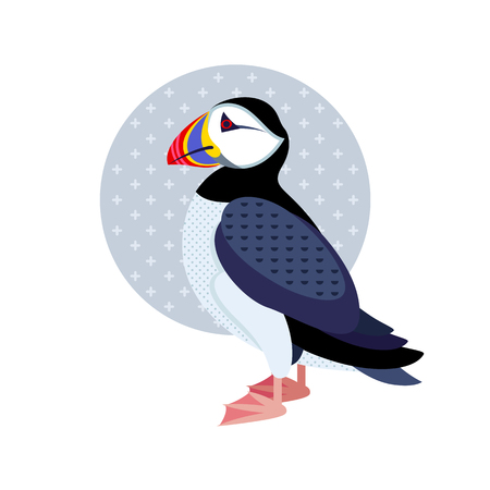 puffin: Bird puffin. Decorative vector bird - flat icon. Illustration bird isolated image on a white background.