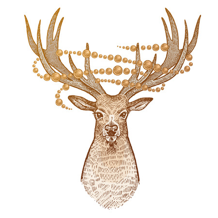 Deer isolated on white background. Head of reindeer with big horns full face and sparkling garland. Festive decoration. Animal symbol of Christmas. Print gold foil. art illustration. Vintage