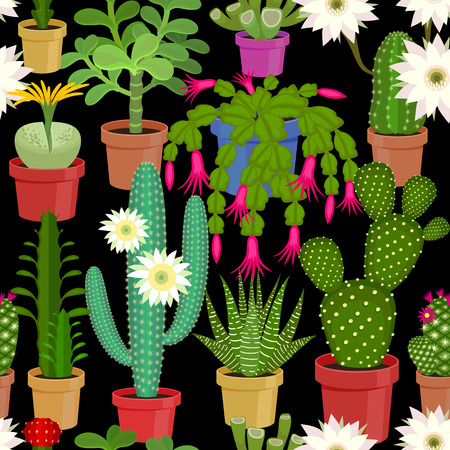 Blooming cactus on a black background. Seamless pattern. illustration of flowers. Illustration