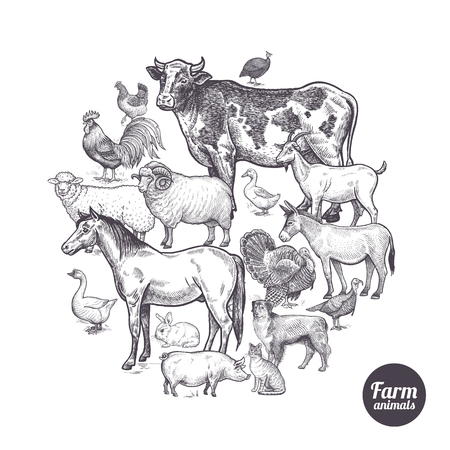 The composition in the circle with farm animals and birds. Designed for shops of farm products, advertising banners, print on bags, packaging, wrapping paper. Vintage. Vector illustration. Ilustração