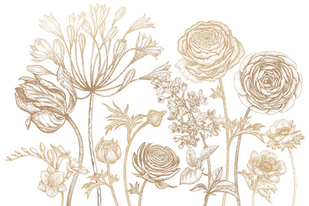 Bouquet of spring flowers blooming. Hand drawing tulip, African lily, ranunculus, anemones, lilac, freesia print gold foil on white background. Vector illustration art floral design. Vintage engraving