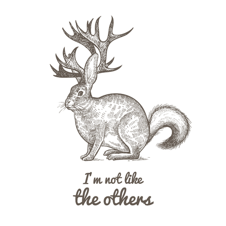 Unusual fantastic animal and phrase Im not like the others. Funny creature includes torso of hare, horns of reindeer, tail of skunk. Vector illustration. Black and white. Vintage engraving.