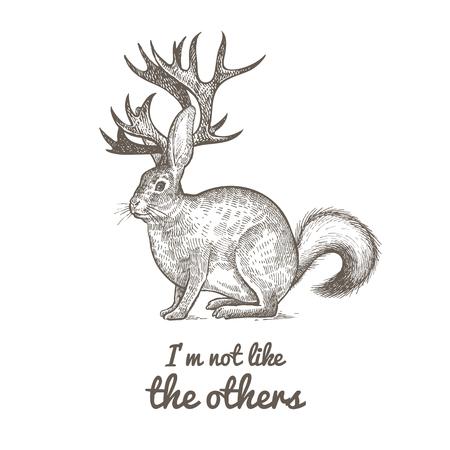 """Ungewöhnliches fantastisches Tier und Phrase """"Ich bin nicht wie die anderen"""". Lustige Kreatur enthält Torso von Hasen, Hörner von Rentieren, Schwanz von Stinktier. Vektor-Illustration. Schwarz und weiß. Weinlese-Gravur. Vektorgrafik"""