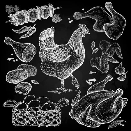 Vogel- und Lebensmittelobjekte Skizze des Geflügels Hühnchenkadaver, Flügel, Beine, Chicken Nuggets, Hühnereier im Korb, Gewürze weiße Kreide auf eine Tafel. Stil Vintage Gravur. Hand Zeichnung Vektor. Standard-Bild - 77010732