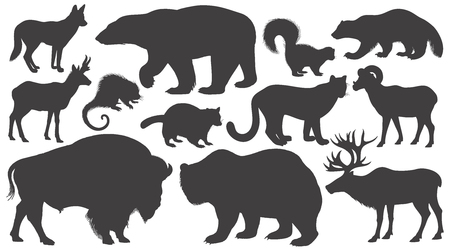 Black silhouettes animals of North America on white background set. Vector illustration art. Polar bear, coyote, puma, skunk, wolverine, antelope, raccoon, porcupine, reindeer, ram, bison, grizzly.