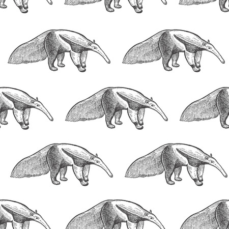 Giant anteater. Seamless pattern with animals South America. Hand drawing of wildlife. Vector illustration art. Black and white. Old engraving. Vintage. Design for fabrics, paper, textiles, fashion.