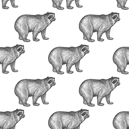 spectacled: Spectacled Bear. Seamless pattern with animals South America. Hand drawing of wildlife. Vector illustration art. Black and white. Old engraving. Vintage. Design for fabrics, paper, textiles, fashion.