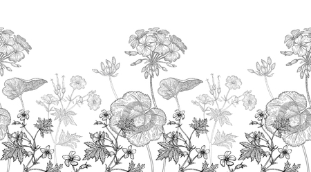 Geranium flower. Seamless floral pattern border. Vector illustration. Hand drawing art. Black and white graphics. Vintage engraving. Template design for packaging, textile, paper, wallpaper, fabric. Vectores
