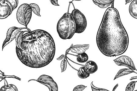 Vruchten en bessen naadloos patroon. Realistische appel, peer, pruimen en kersen. Zwart en wit. Vector illustratie kunst. Vintage gravure. Handtekening. Sjabloon met natuurmotieven voor keukenontwerp.