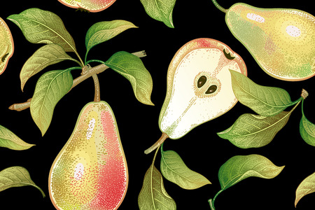 Seamless pattern with pears. Realistic vector illustration plant. Hand drawing with colored pencils. Fruit, leaf, branch of tree on black background. For kitchen design, food packaging. Vintage. Vettoriali