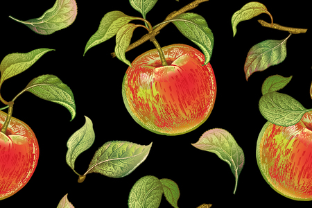 Seamless pattern with red apples. Realistic vector illustration plant. Hand drawing with colored pencils. Fruit, leaf, branch of tree on black background. For kitchen design, food packaging. Vintage. Ilustracja