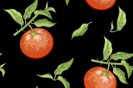 Nahtloses Muster mit Tangerinen. Realistische Vektorillustrationsanlage. Handzeichnung mit farbigen Bleistiften. Mandarinenfrucht, Blatt, Niederlassung auf schwarzem Hintergrund. Für Küchendesign, Lebensmittelverpackungen. Jahrgang. Standard-Bild - 82732567