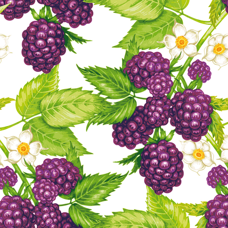 Vector seamless background. The branches of a blackberry with berries and flowers. Design for fabrics, textiles, paper, wallpaper, web. Vintage.