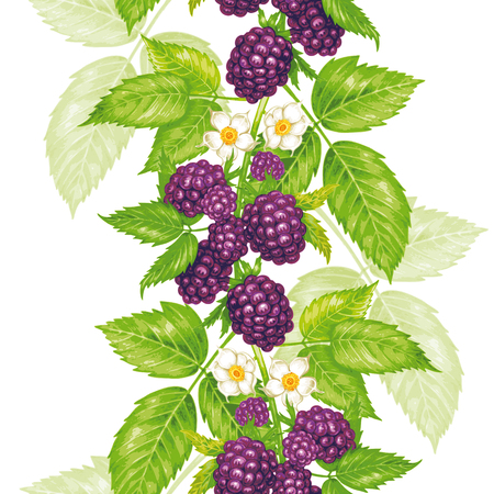 Vector naadloze achtergrond. De takken van een blackberry met bessen en bloemen. Ontwerp voor stoffen, textiel, papier, behang, web. Wijnoogst. Stock Illustratie
