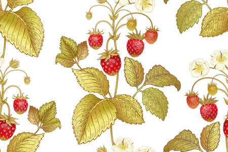 A Seamless botanical pattern with flowers and berries of strawberry on white background. Vintage. Victorian style. Vector illustration. Template for kitchen design, packaging for food, paper, textiles.
