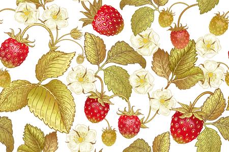 Een naadloos botanisch patroon met bloemen en bessen van aardbei op witte achtergrond. Wijnoogst. Victoriaanse stijl. Vector illustratie. Sjabloon voor keukenontwerp, verpakking voor voedsel, papier, textiel. Stock Illustratie