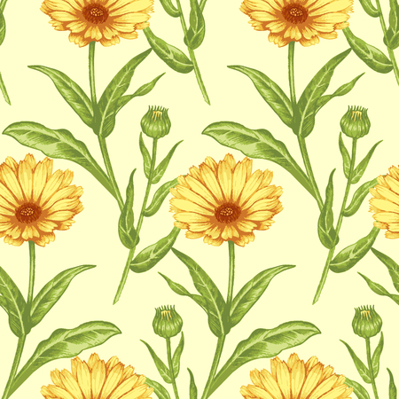 Seamless background for textile, paper, web, tissue. Illustration flowers calendula. Vector. Фото со стока - 83374444