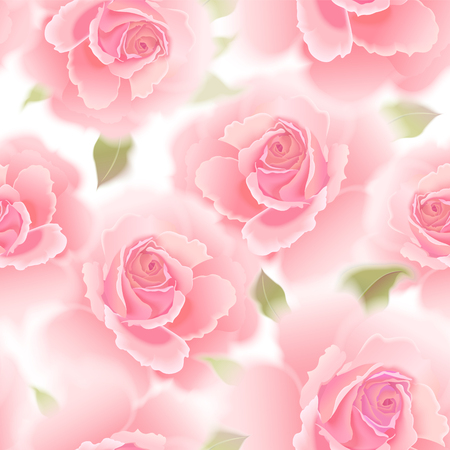 Roses. Vector seamless pattern. Garden flower hand drawing pastel. Realistic floral illustration - design template luxury packing, textiles, paper. Pink flowers and green leaves on white background.