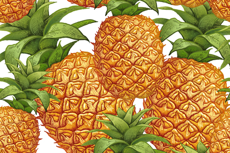 Pineapple on white background. Seamless botanical pattern with fruit. Vintage. Victorian style. Vector illustration. Template for kitchen design, food packaging, paper, textiles, dishes, interior.