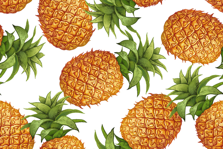 Pineapple on white . botanical pattern with fruit. Vintage. Victorian style. illustration. Template for kitchen design, food packaging, paper, textiles, dishes, interior.