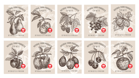 Labels with various fruits, berries and inscriptions. Set templates price tags for shops and markets of organic vegetarian food. Vector illustration art. Vintage. Hand drawing of nature objects. Stock fotó - 85695261
