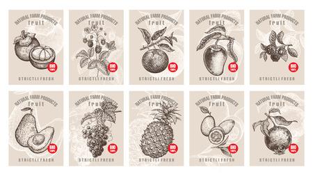 Etiketten met verschillende soorten fruit, bessen en inscripties. Sjablonen prijskaartjes instellen voor winkels en markten voor biologisch vegetarisch voedsel. Vector illustratie kunst. Wijnoogst. Handtekening van aardvoorwerpen. Stock Illustratie