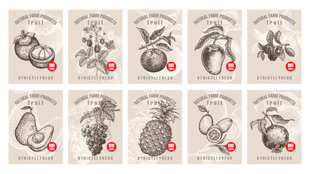 Labels with various fruits, berries and inscriptions. Set templates price tags for shops and markets of organic vegetarian food. Vector illustration art. Vintage. Hand drawing of nature objects.