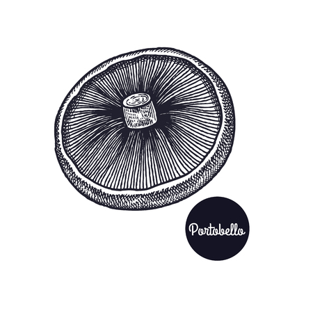 Portobello mushroom. Hand drawing. Style Vintage engraving. Vector illustration art. Black and white. Isolated objects of nature. Cooking food design for menu, store signs, markets. Illustration