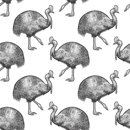 Cassowary bird. Seamless pattern with animals of Australia. Hand drawing of wildlife. Vector illustration art. Black and white. Design for fabrics, paper, textiles, fashion. Stok Fotoğraf - 89829420